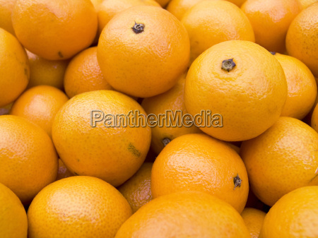 tangerines on a counter macro