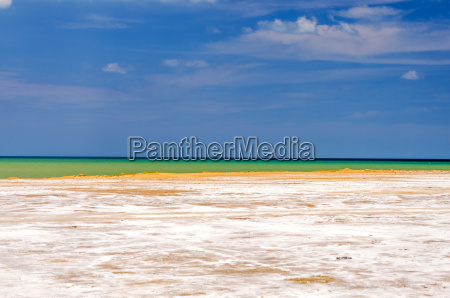 salty coastal landscape