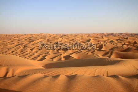 alone, in, the, desert - 10240089