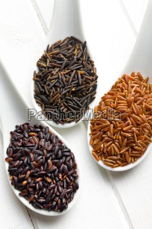 food, aliment, health, wild, black, swarthy - 10250287