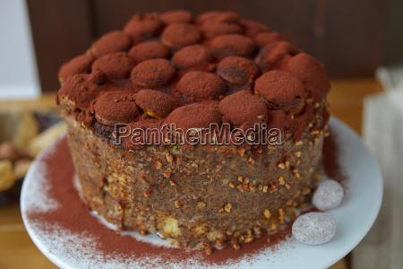 tiramisu, cake - 10255517