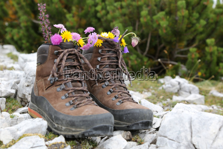 walking, shoes, with, flowers, in, the - 10296965