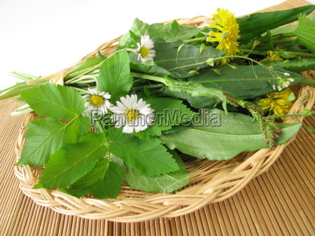 wild, herbs, in, basket - 10299945