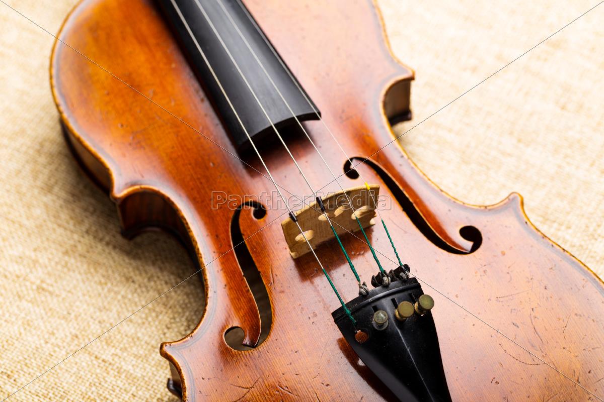 violin - 10303937