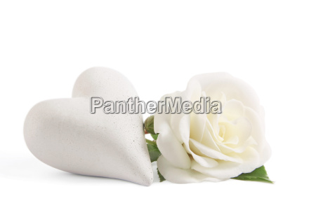 white rose with heart