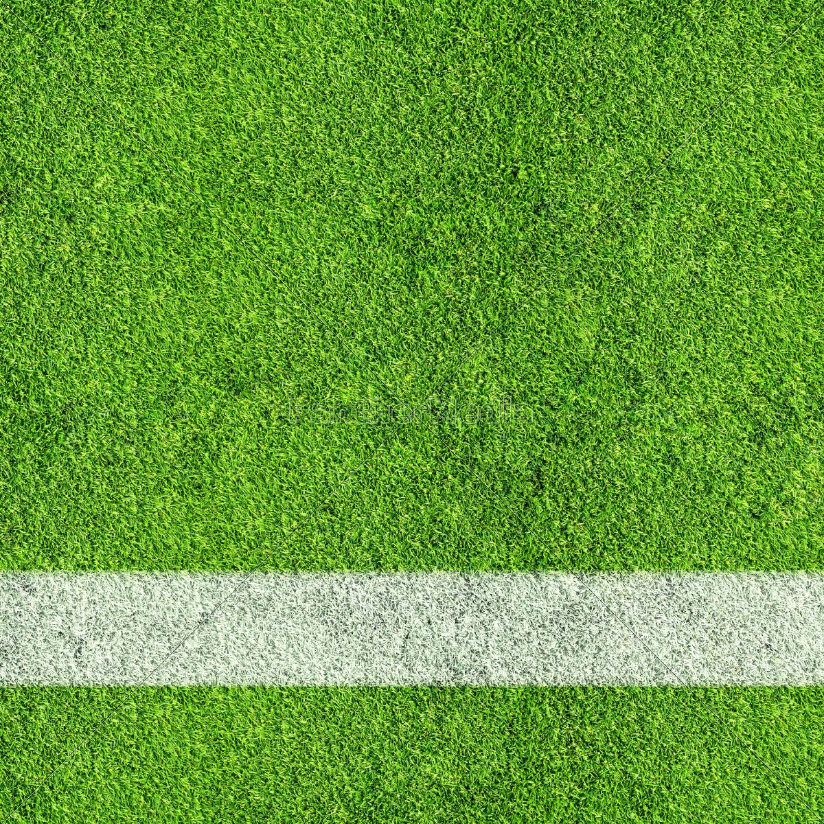 soccer, field - 10308145