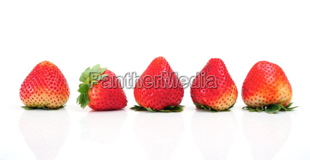 strawberry - 10308157