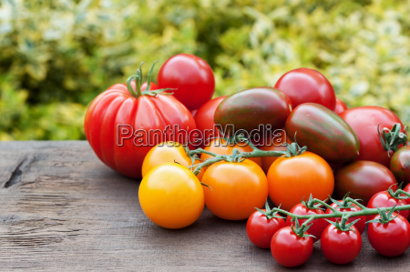 colorful, tomatoes - 10323565