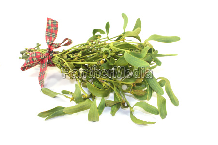 mistletoe with berries and ribbons
