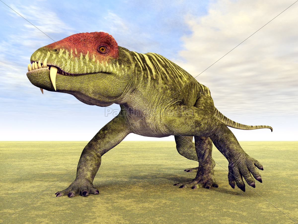 doliosauriscus - 10335013