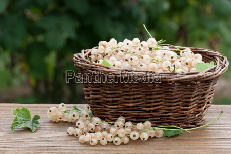 basket full of red currants