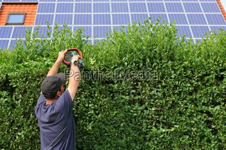 gardening cut hedge solar