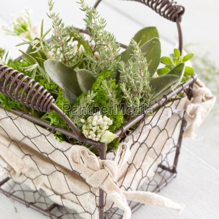 aromatic herbal mix