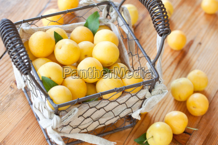 freshly, harvested, yellow, plums - 10458707