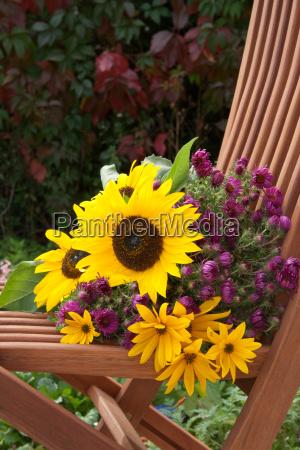 sunflower sunflowers chestnut chestnuts pumpkin pumpkins