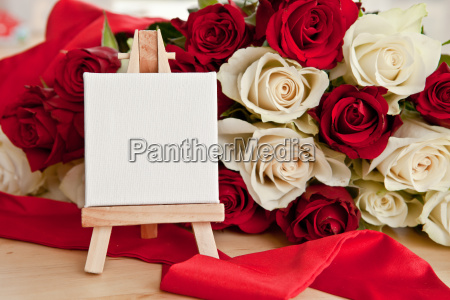 white and red roses as a