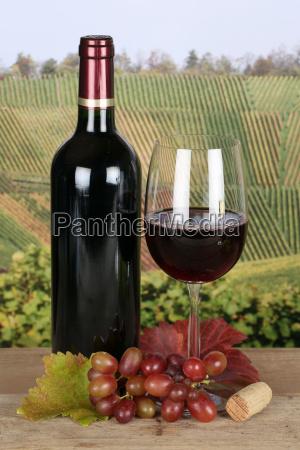 red wine in wine bottle in