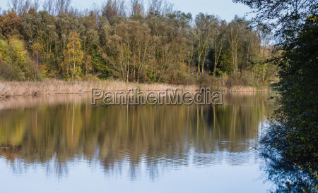 lake with reflection of trees in