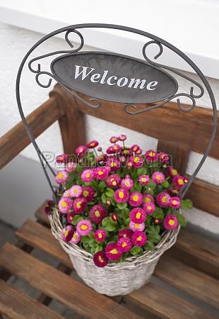 flower pot decoration welcome