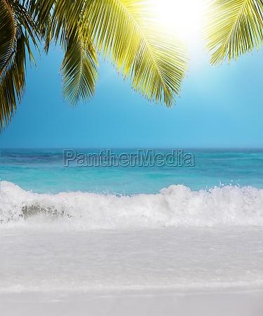 tropical paradise vertical composition