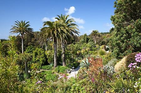 abbey gardens tresco