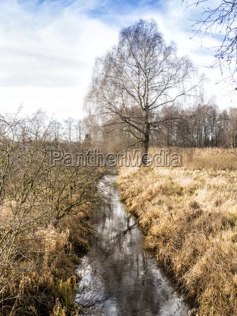 grassland with ditch