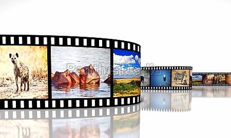 africa movie