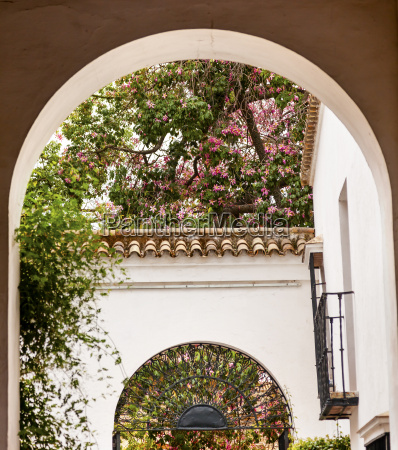 white horseshoe arches pink flowers alcazar