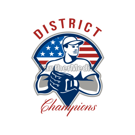 baseball district champions retro
