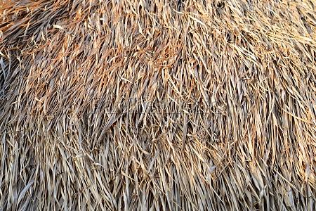 straw roof
