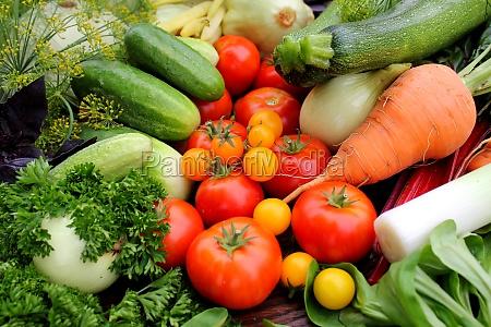 fresh vegetables tomato cucumber carrot zucchini