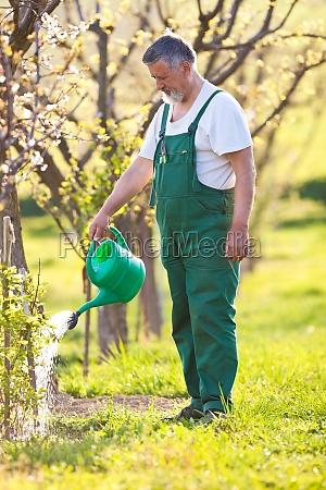 portrait of a senior gardener in