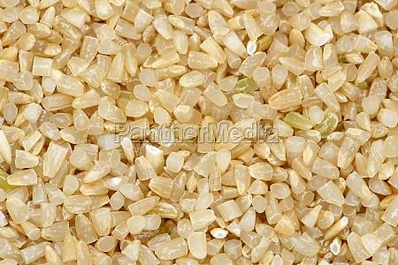 rice germ