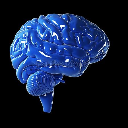 3d rendered illustration glossy blue