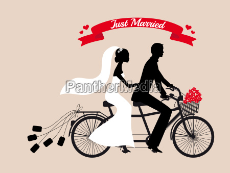 just married wedding couple on tandem