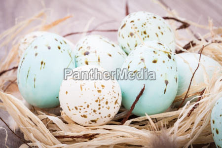 colorful bright easter eggs in a