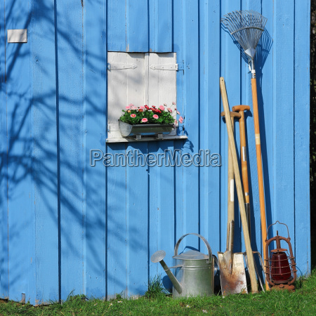 blue shed with garden tools