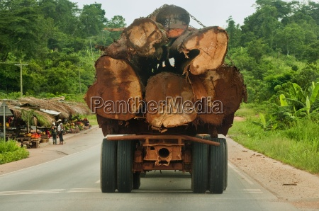 truck loaded with rainforest timber atobiase