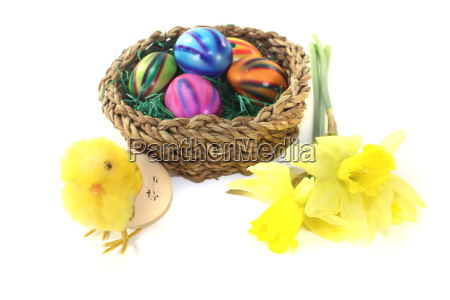 easter nest with chicks and eggs
