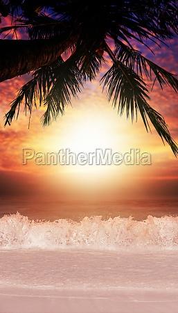 tropical sea coast at sunset time