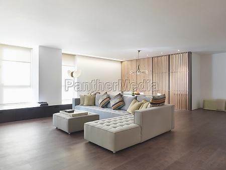 minimalistic living room with hardwood floors