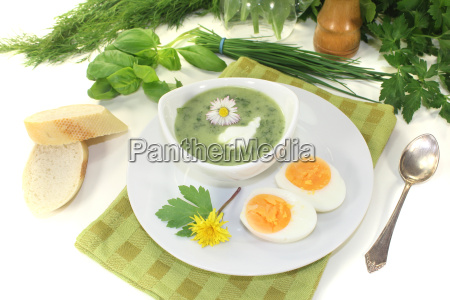 herb, soup, with, a, dollop, of - 11368111