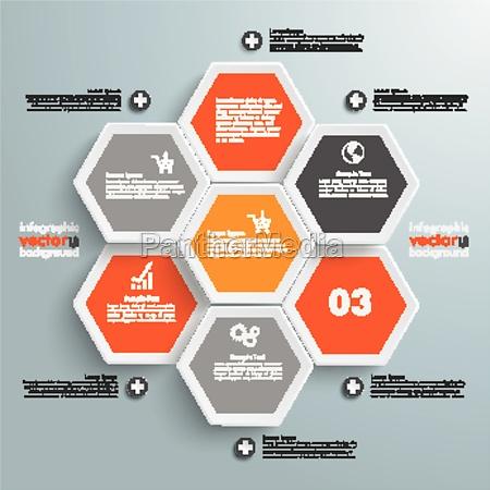 hexagon business infographic 7 options