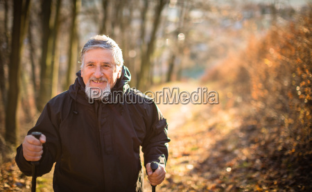 senior man nordic walking enjoying the