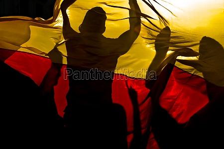 fans celebrate behind germany flag