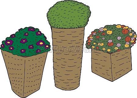 flowers in rattan planters