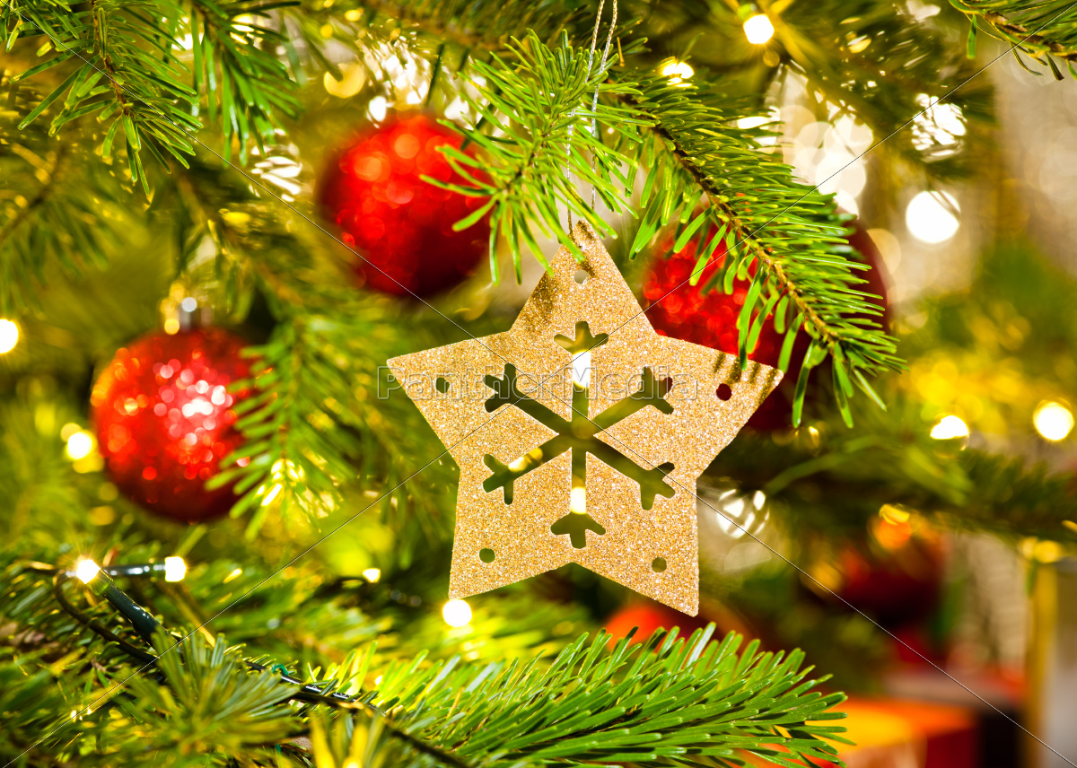 Ornament In A Real Christmas Tree Royalty Free Image 11520237 Panthermedia Stock Agency