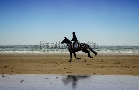 riders on the north sea beach