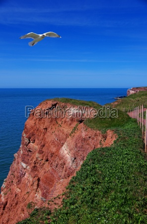 rock of helgoland in the north