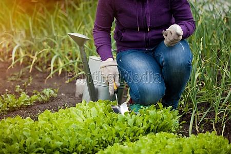 photo of woman working ar garden